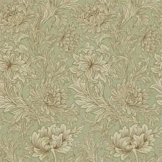 Chrysanthemum Toile Eggshell/Gold
