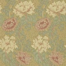 Chrysanthemum Pink/Yellow/Green