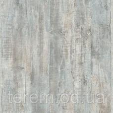 Reflets L68301