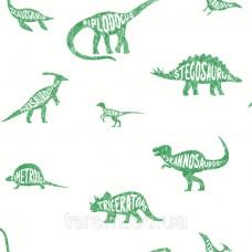 Dino Dictionary Green