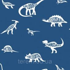 Dino Dictionary Blue