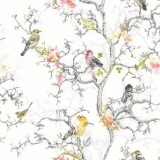 Birdwatch white