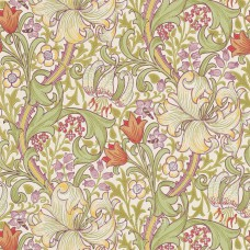 Golden Lily  Olive/Russet